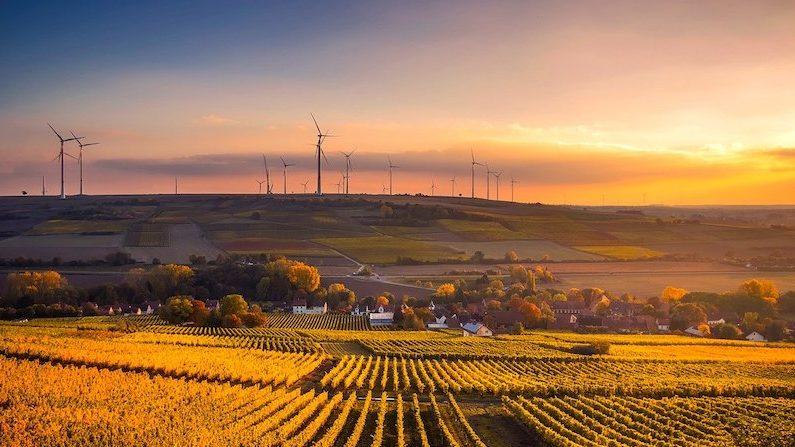 image-Impacts de la production d'électricité éolienne. Quel bilan en 2020 ? Quelles perspectives ?